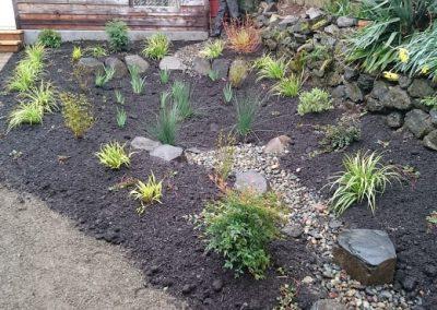 Rain-Garden-Before-min