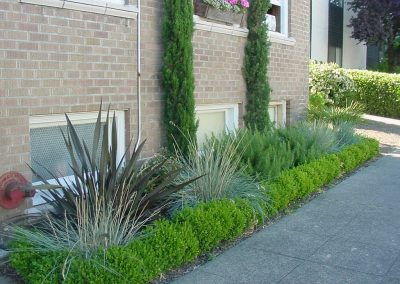 commercial-plantings-min