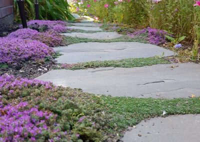 flagstone-walkway-with-groundcover-min