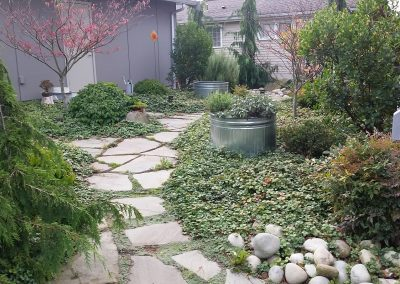 flagstone-walkway-with-plants-and-established-groundcover-min