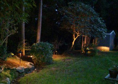 landscape-lighting1
