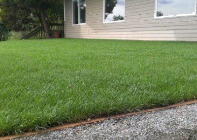 lawn1-min