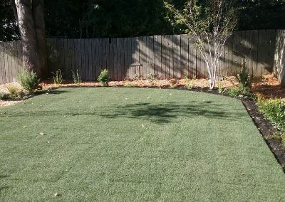 new-sod-with-border-plantings-min